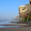 Surf Beach Rovers
